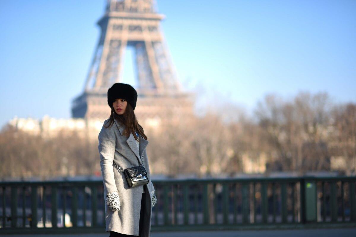 The Wild Parisian Pont Bir-Hakeim