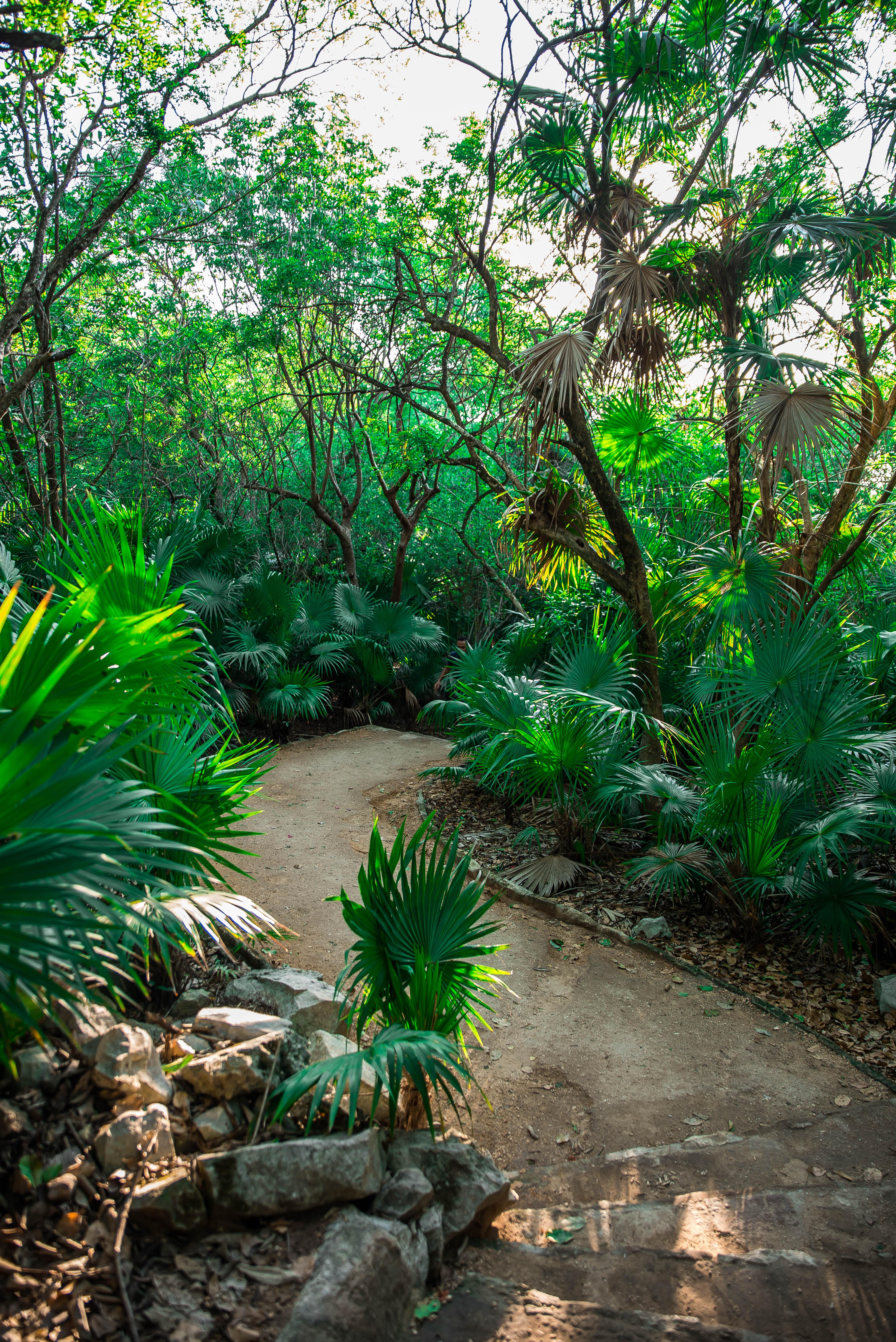 Tulum, un paradis au Mexique